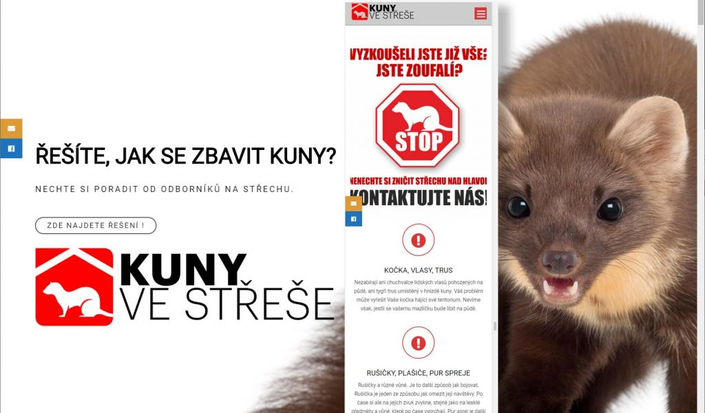 ref_kuny_na_strese
